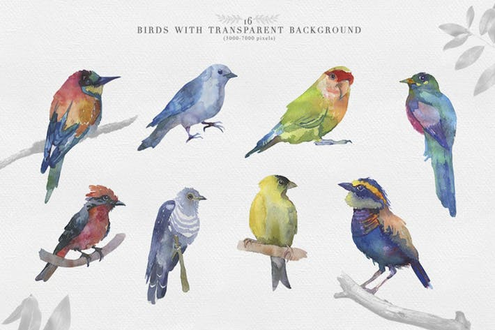 Thumbnail for Watercolor Clipart Bird Set
