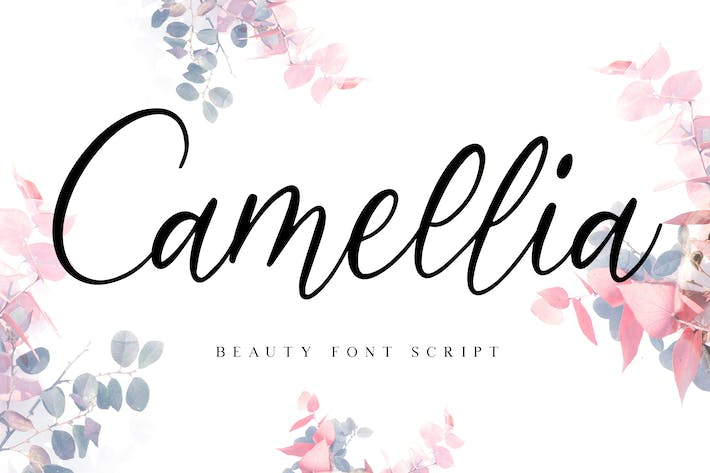 Cover Image For Camellia Beauty Script Font