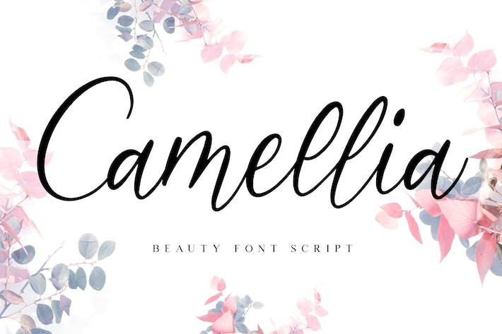 Thumbnail for Camellia Beauty Script Font
