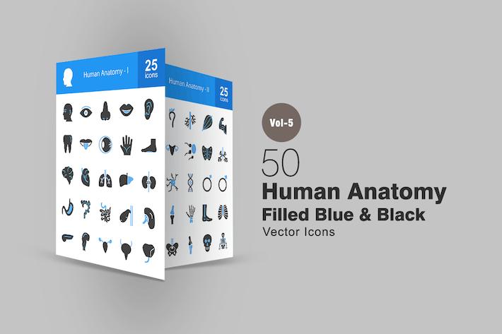 Thumbnail for 50 Human Anatomy Blue & Black Icons