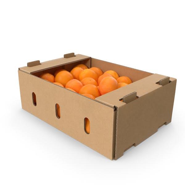 Картонная коробка апельсинов