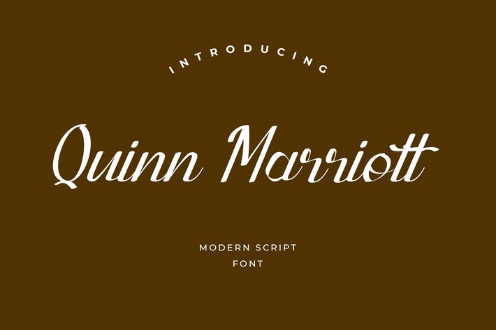 Cover Image For Quinn Marriott Signature Police