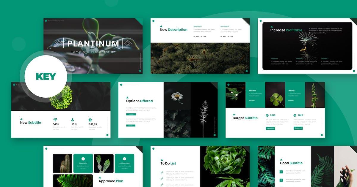 Download Plantinum - Keynote Template by karkunstudio