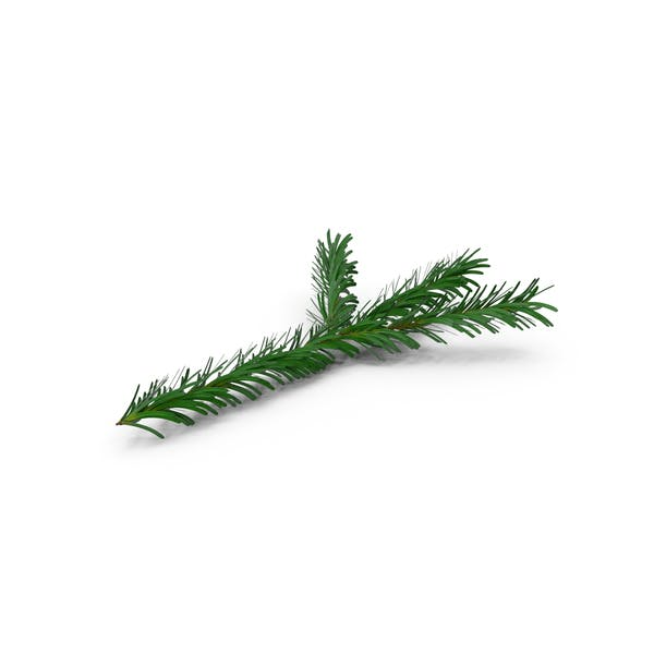 Cover Image for Pine Tree Sprig