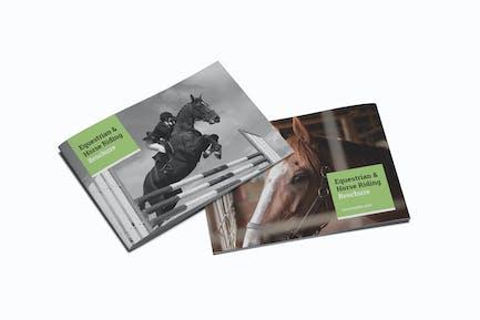 Equestrian & Horse Riding A5 Brochure