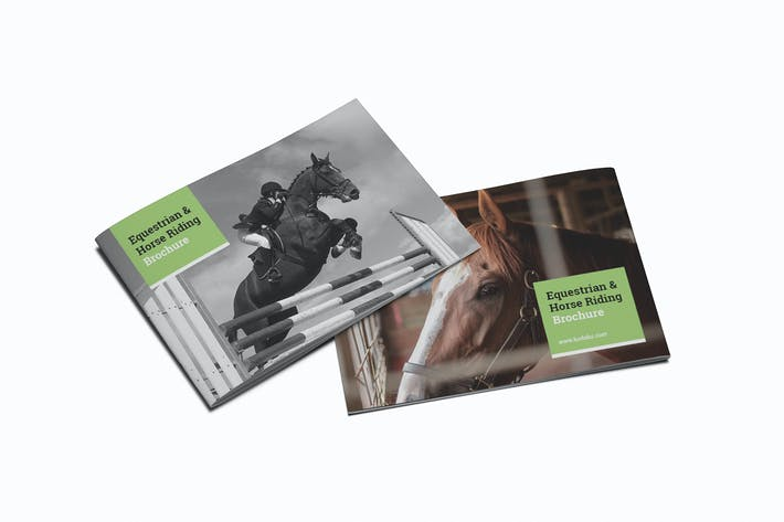 Equestrian & Horse Riding A5 Brochure