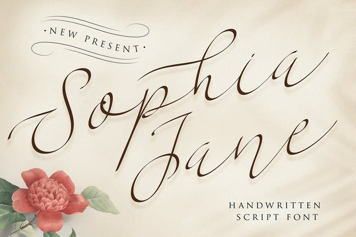 Thumbnail for Sophia Jane Script