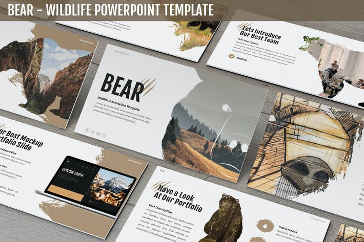 Thumbnail for Bear - Wildlife Powerpoint Template