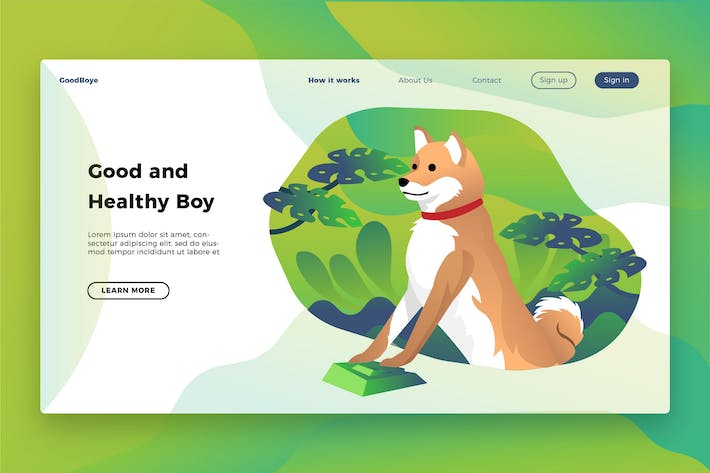 Cover Image For Shiba Inu - Banner & Landing Page