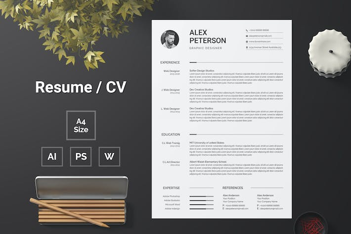 Thumbnail for Resume Template 105