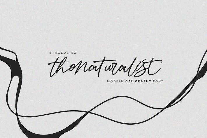 Thumbnail for Thenaturalist Caligraphy Wedding Font