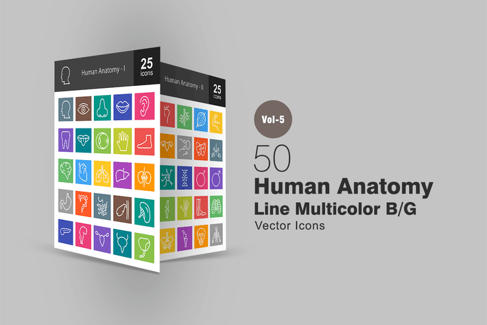 Cover Image For 50 Human Anatomy Line Multicolor Icons