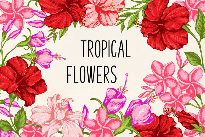 Thumbnail for Tropical Flowers Design Kit
