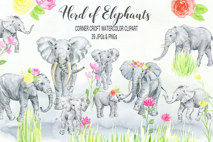 Thumbnail for Watercolor herd of elephants