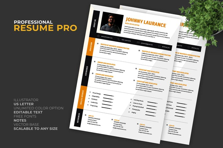 Thumbnail for Engineer Resume / CV Template Pro