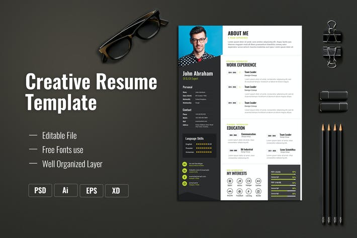 249 Infographic Resume Graphic Templates Compatible With Adobe Xd