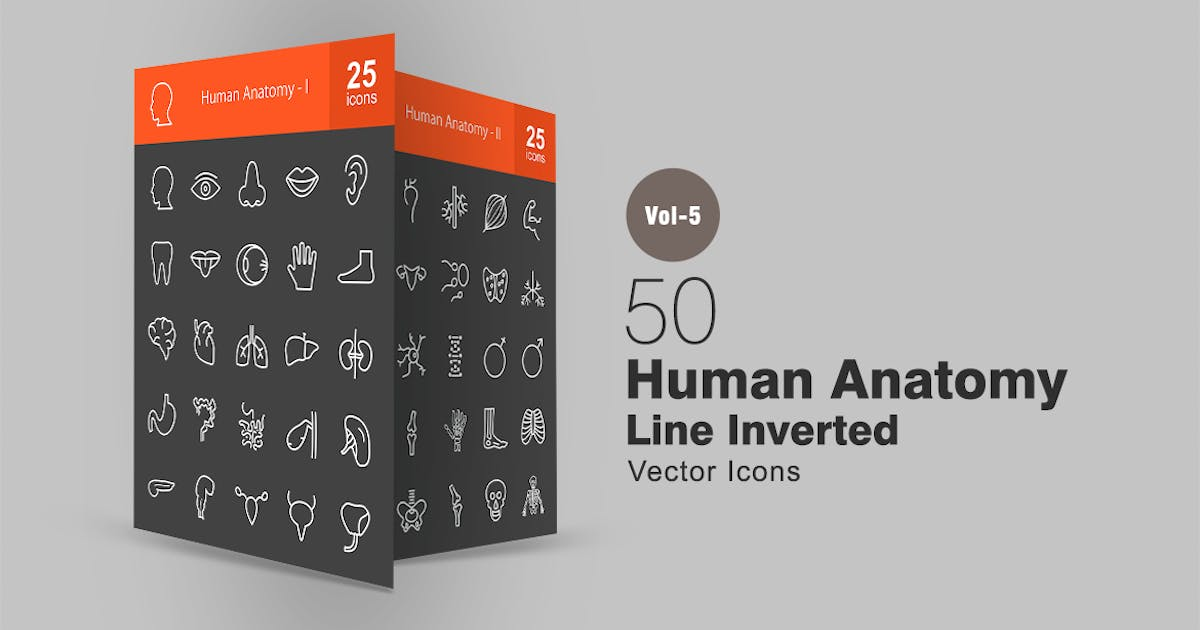 Download 50 Human Anatomy Line Inverted Icons by Unknow