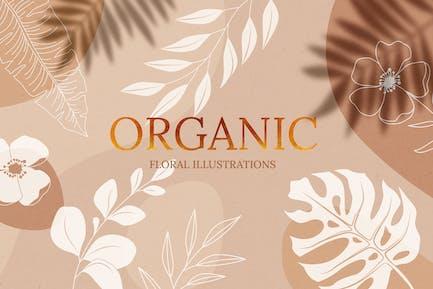 Ilustraciones florales orgánicas
