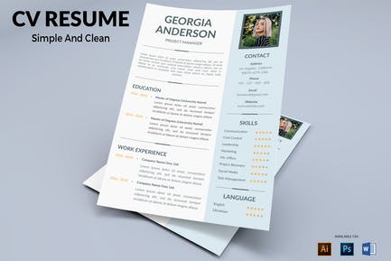 CV Resume Professional