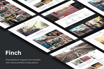 Finch — Fotografie & Magazin Site Vorlage