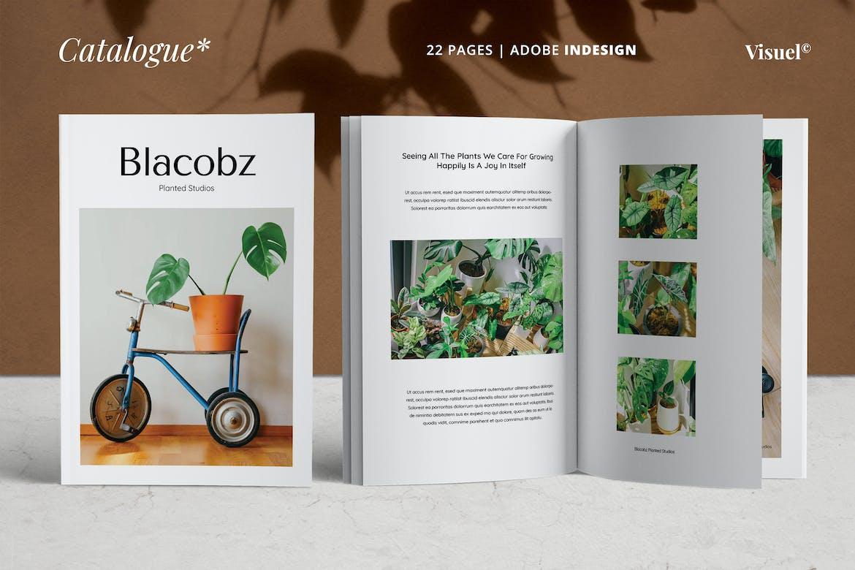 Lookbook-Catalogue