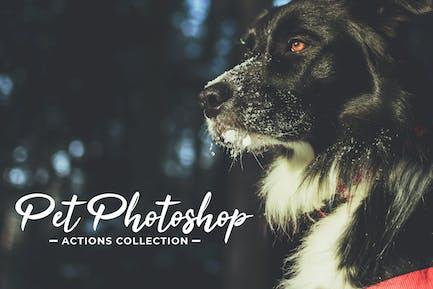Коллекция действий для домашних животных Photoshop