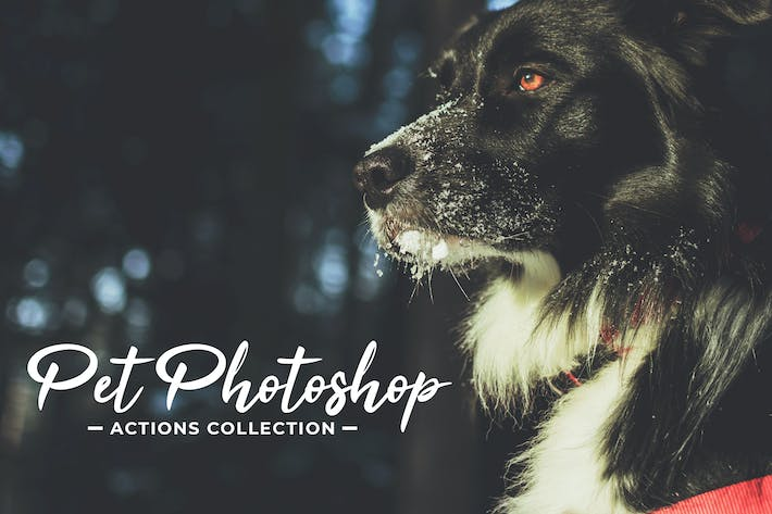 Thumbnail for Pet Photoshop Actions Collection