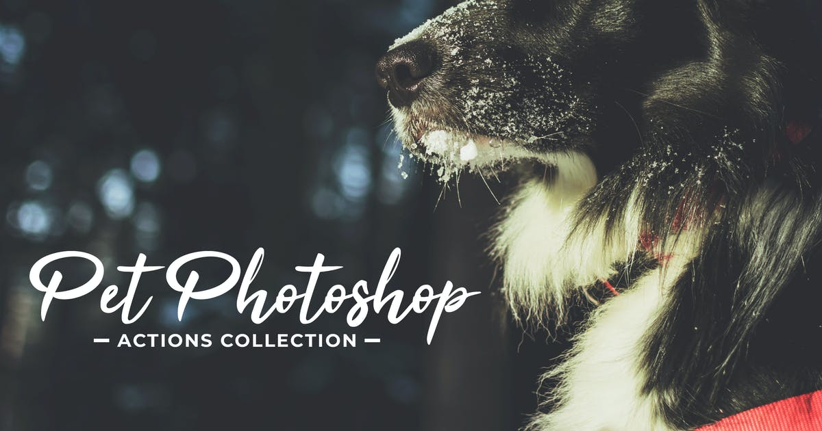Pet Photoshop Actions Collection by creativetacos