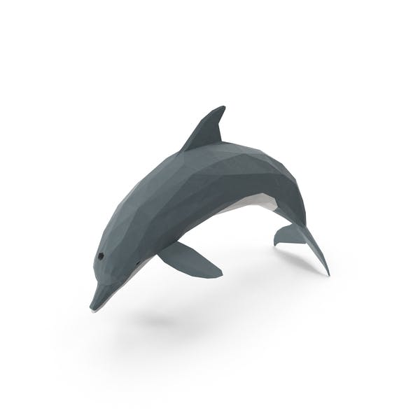 Cover Image for Low Poly Dolphin