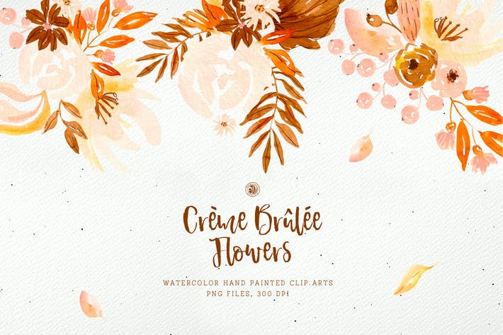 Thumbnail for Creme Brûlée Flowers