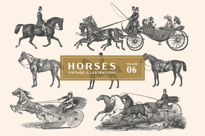 Vintage Horse Illustrations Vol. 6
