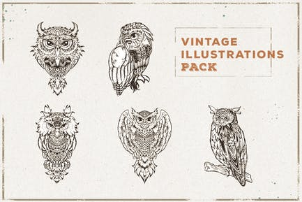 Vintage Owl Illustration Pack
