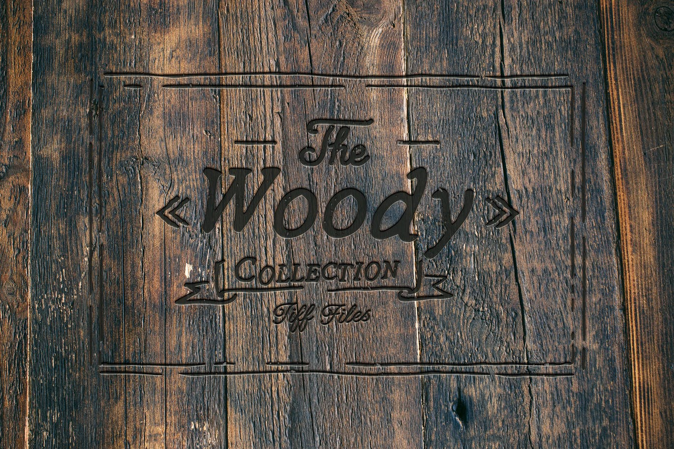 The-Woody-Collection