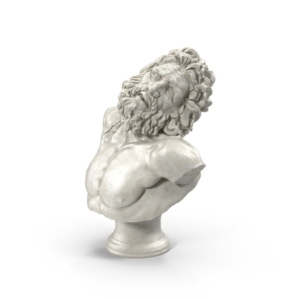 Thumbnail for Busto Laocoon