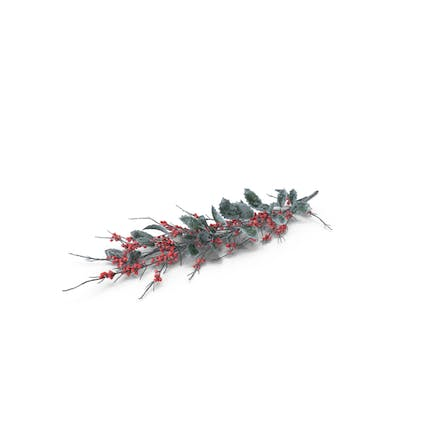 Frosted Holly Twig
