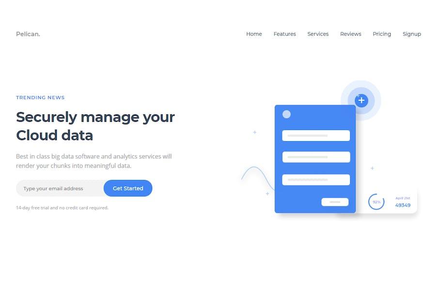 Pelican Software Landing Page