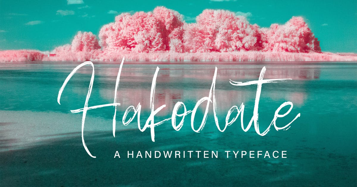 Download Hakodate - Handbrush Typeface by arendxstudio