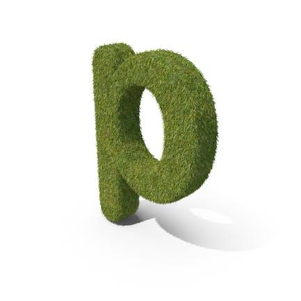 Grass Kleinbuchstabe P