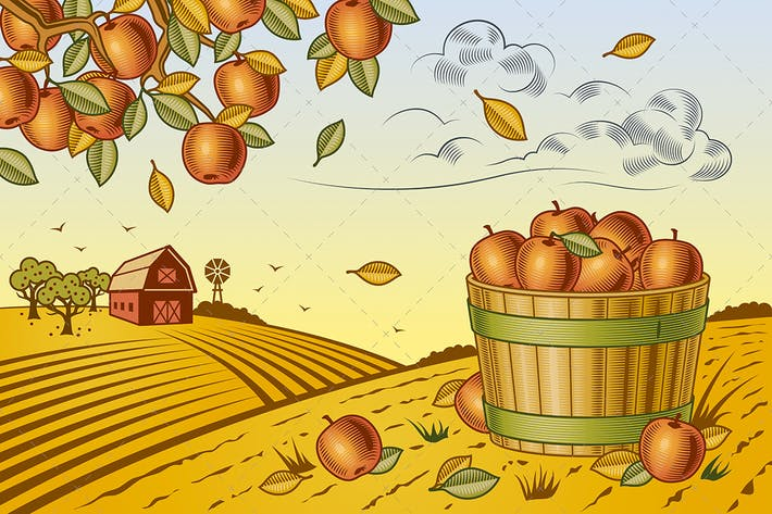 Thumbnail for Apple Harvest Landscape