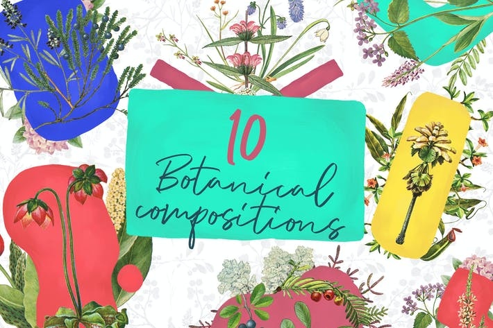 Thumbnail for 10 Botanical Compositions