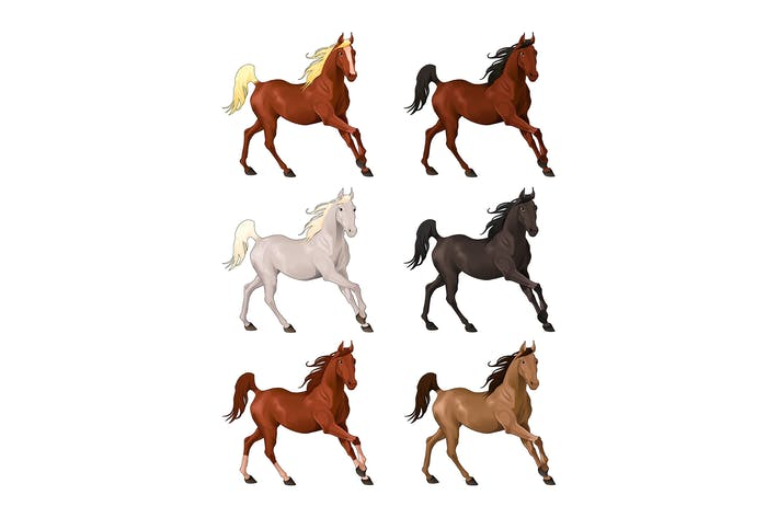 Thumbnail for Horses in Different Colors
