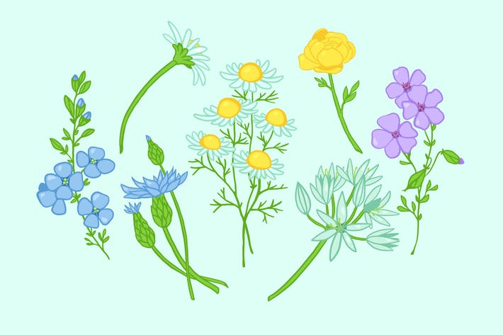 Thumbnail for Field Flowers Clipart