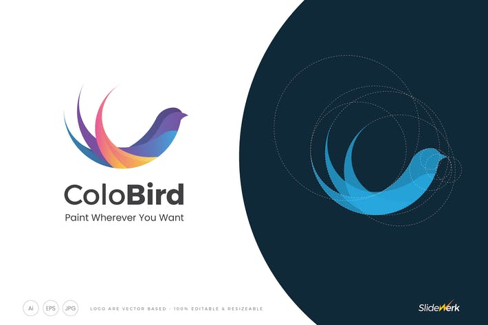 Thumbnail for Colorful Flat Bird Abstract Shape Logo Template