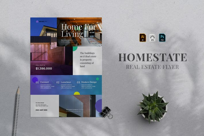 Thumbnail for Real Estate Flyer 13