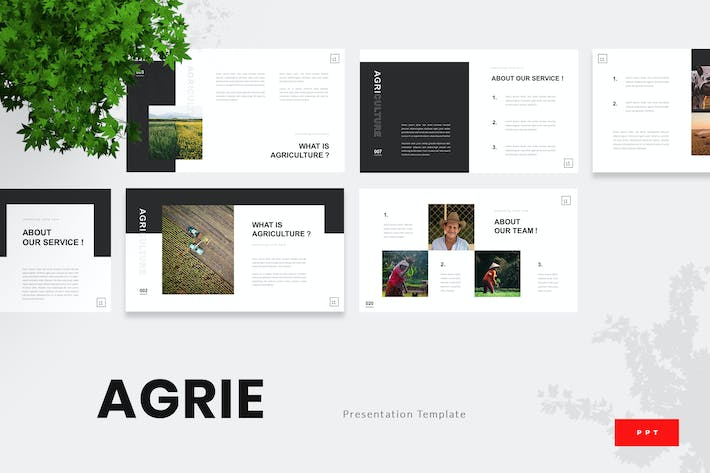 Thumbnail for Agrie - Agriculture Powerpoint Template