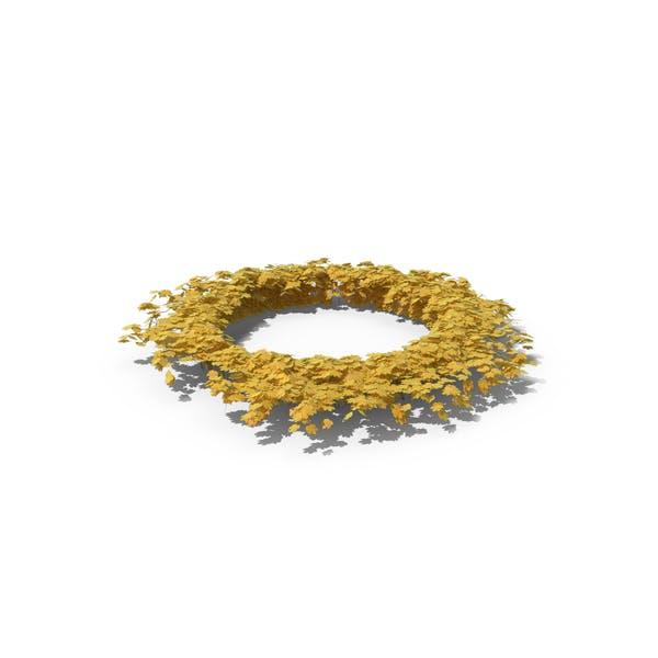 Thumbnail for Yellow Ivy Circle