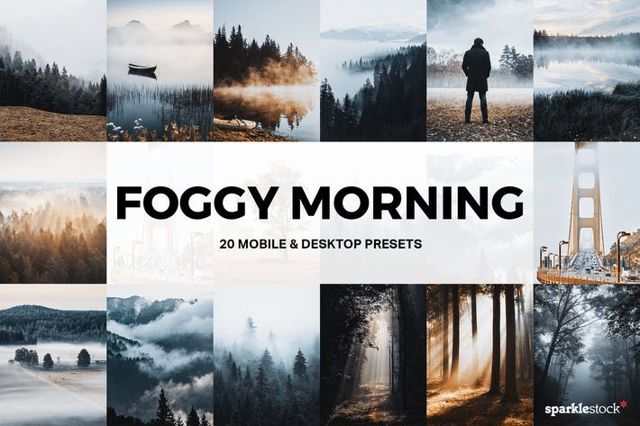 Thumbnail for 20 Foggy Morning Lightroom Presets and LUTs