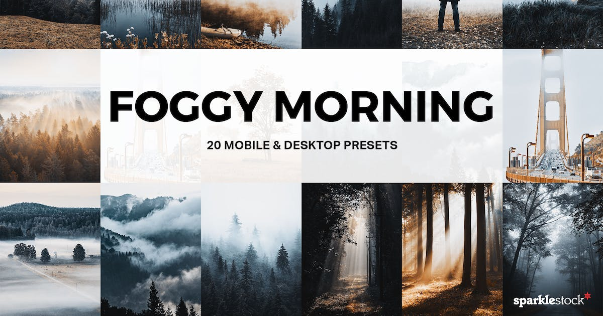 Download 20 Foggy Morning Lightroom Presets and LUTs by sparklestock