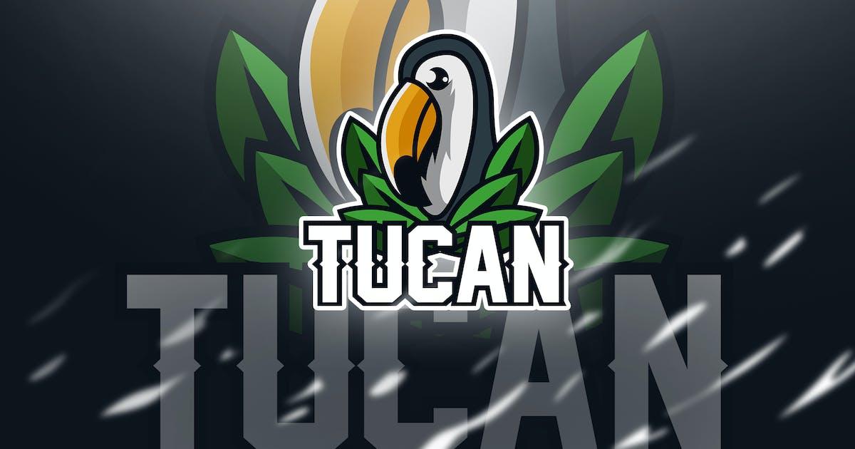Download tucan - Mascot & Esport Logo by aqrstudio