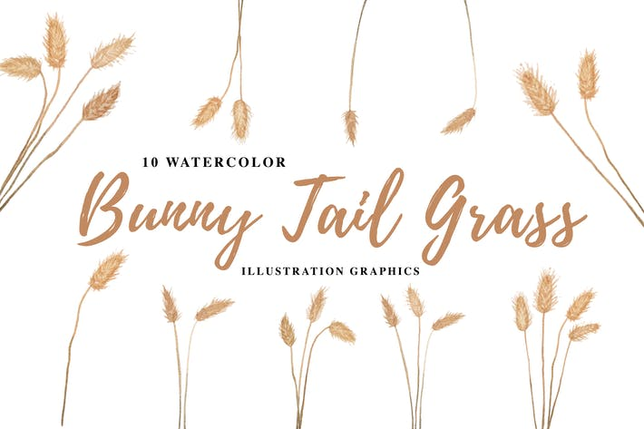 Thumbnail for 10 Watercolor Bunny Tail Grass Illustration